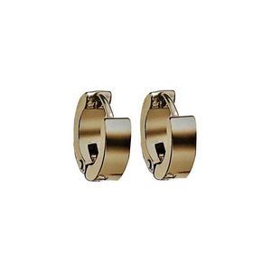 Earrings rings steel 316L gold